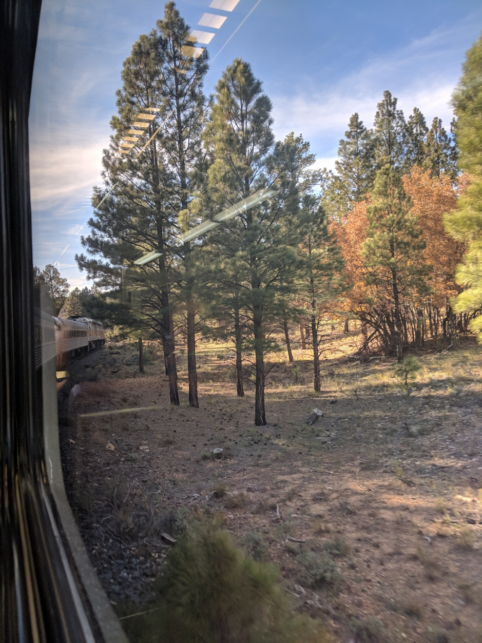 View from the train to Grand Canyon, Arizona
