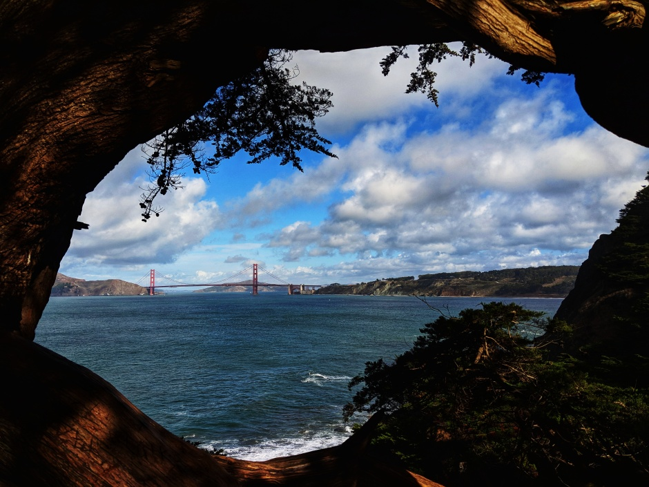 View of the Golden Gate Bridge from Land's End trail